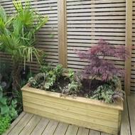 jacksons garden bed