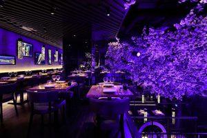 Mezzanine dining area