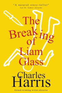 The Breaking of Liam Glass Cover LARGE EBOOK