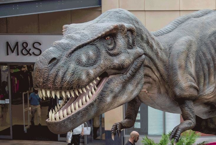 A picture of the animatronic T Rex dinosaur situated in Trinity Leeds for Leeds Jurassic Trail